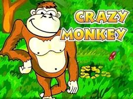 Crazy Мonkey